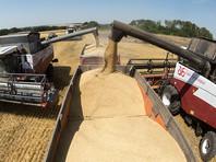 Россия не будет в 2017 году вводить экспортную пошлину на пшеницу по итогам рекордного урожая, экспорт зерна - приоритет