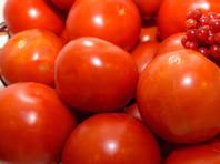 Россельхознадзор запретил ввозить в Россию помидоры, реэкспортируемые Белоруссией из стран Африки и Азии