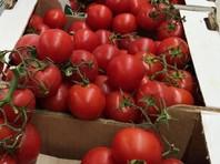 Новак: поставки в Россию турецких томатов возобновятся с 1 декабря