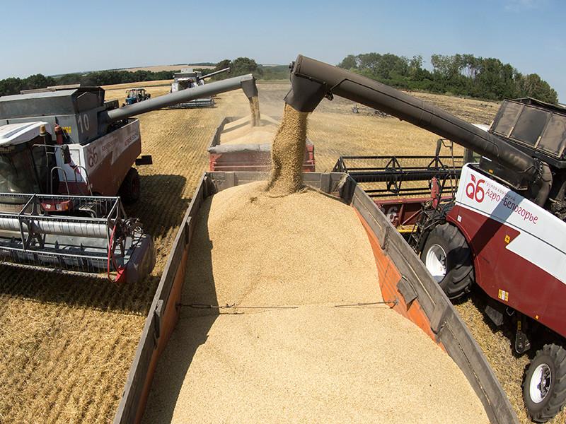 Российские власти не планируют возвращать экспортную пошлину на пшеницу в 2017 году по итогам сельхозгода, вероятность введения других количественных или таможенно-тарифных ограничений на рынке также крайне низка