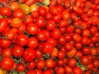Россия легализует импорт турецких помидоров. Сейчас их считают белорусскими