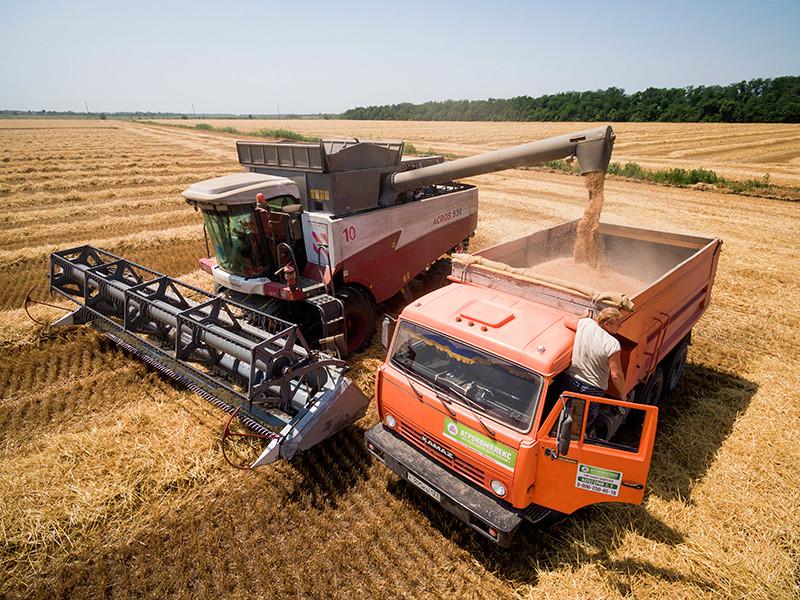 Рекордный урожай пшеницы в России выдавливает с рынка американских фермеров