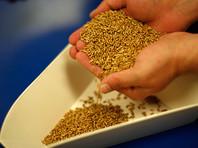 Россия готовится собрать рекордный урожай зерна за последние 100 лет. WSJ оценивает урожай в 83 млн тонн. В правительстве называли цифры гораздо более внушительные - под 130 млн тонн. Исторический максимум - 127 млн, собранные в 1978 году