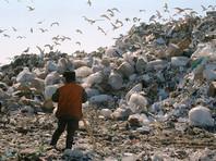 Журналисты узнали о планах  наладить вывоз мусора из Москвы на заброшенные объекты Минобороны