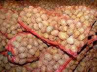 Россияне в 2017 году переели картофеля - на 25% больше нормы