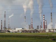 Новый глава Минприроды предлагает финансировать экологию за счет россиян