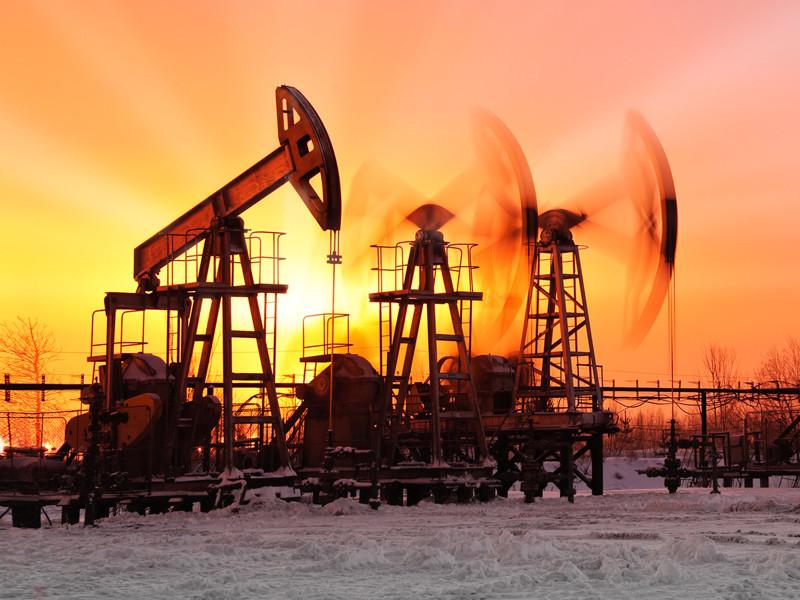 Стоимость майских фьючерсов на нефть марки Brent в ходе торгов на лондонской бирже ICE упала на 6,19% - до 24,71 доллара за баррель