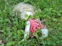 В Приамурье пьяный мужчина отрезал голову двухлетней дочери, приняв ее за куклу