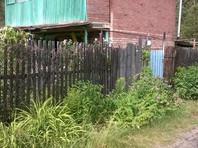 В Тольятти голый мужчина убил садовой скульптурой дачницу и избил еще трех человек