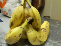В СИЗО Петербурга передали бананы, пропитанные наркотическим веществом