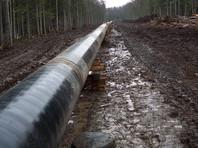 """На Орловщине """"черные нефтяники"""", виновные в гибели пяти гастарбайтеров, получили по 2 года колонии"""