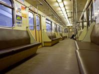 Полицейские задержали москвича, который в метро демонстрировал половые органы 12-летней девочке
