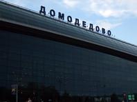 """В аэропорту Домодедово у бразильского колдуна изъяли """"чай для медитации"""" с наркотическим веществом"""