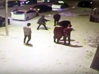 В Приамурье задержан студент, застреливший возле кафе военнослужащего (ВИДЕО)