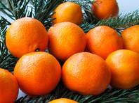 По дороге из Петербурга в Москву бесследно исчезло 18 тонн мандаринов