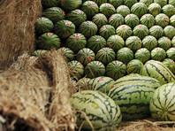 В Аргентине полиция обнаружила 7  тонн марихуаны в фуре с арбузами