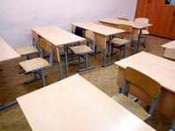 СК проверяет данные о сексуальном насилии в подмосковной школе со стороны близнецов-четвероклассников