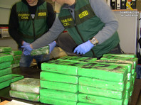 В Испании у доминиканца изъято 166 кг кокаина и 400 тысяч евро
