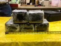 """В США работник аэропорта нашел в самолете """"забытый"""" кокаин на 430 тысяч долларов"""