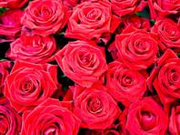 В Саратове рецидивист украл 50 роз, чтобы подарить их незнакомым женщинам к 8 марта