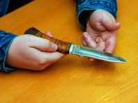 Петербуржец, выгуливавший своего пса, ранил ножом другую собачницу и ее питомца