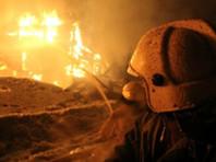 Злоумышленник поджег дом, после чего жертвы получили смертельные травмы. Выжить удалось только малолетнему ребенку, которого, по версии следователей, обвиняемый тоже хотел убить. Однако после начала пожара мужчина спас дочь от огня