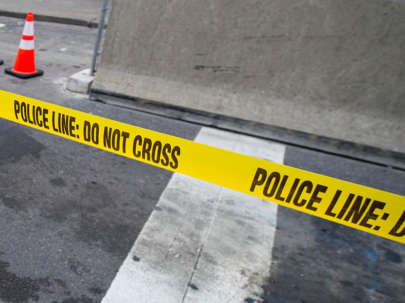 В Пенсильвании женщина застрелила бойфренда, которого вера в заговор рептилоидов превратила в параноика