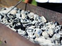 На подмосковной базе отдыха в мангале найдены обугленные и расчлененные части человека