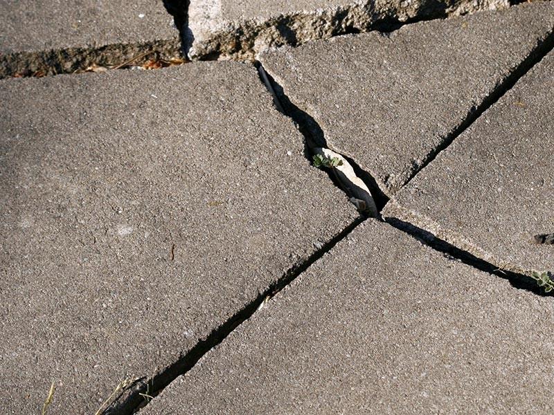 Следователи Воронежской области расследуют убийство мужчины, останки которого найдены замурованными в бетон в хозяйственной постройке. К этому преступлению оказался причастен родственник потерпевшего