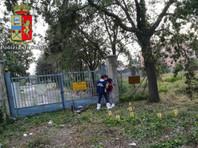 В Италии арестованы подростки, подозреваемые в групповом изнасиловании польской туристки на пляже
