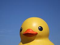 Злоумышленник похитил пластиковую фигурку утки, установленную у входа в заведение общественного питания