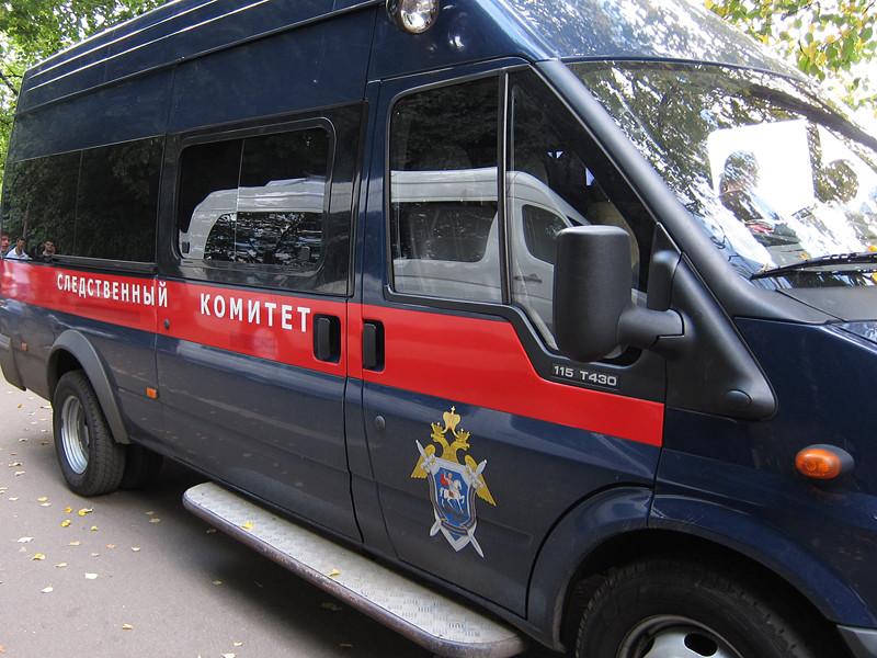В воронежском селе Большая Казинка пропала, а затем была найдена убитой 14-летняя школьница