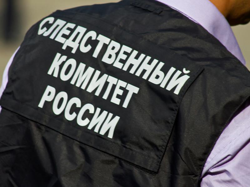 Следователи Московской области выясняют обстоятельства убийства школьницы