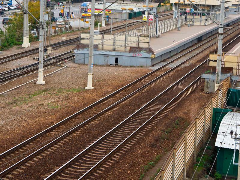 В Москве хулиганы закидали камнями  5 поездов, пострадал один человек