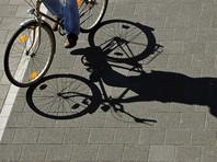 На Брянщине велосипедист избил до смерти водителя-лихача