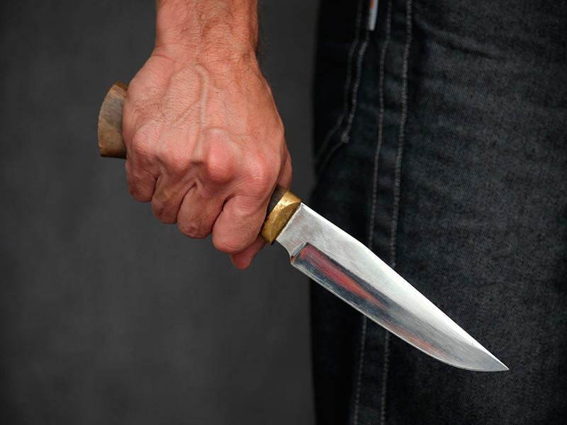 Под Архангельском пьяный мужчина ранил ножом 10-летнюю девочку, целясь в собаку