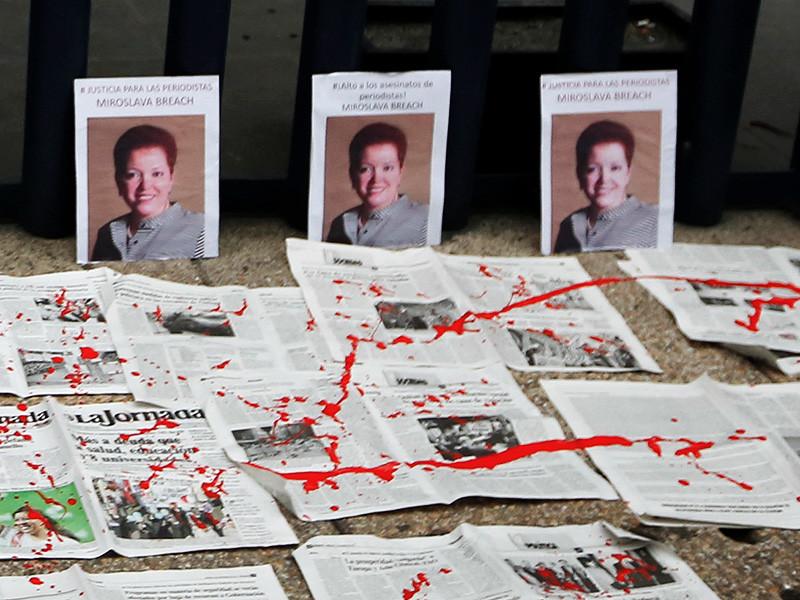 Правоохранительные органы Мексики при участии сотрудников разведывательной спецслужбы задержали предполагаемого организатора убийства известной журналистки Мирославы Брич