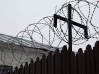 """На Кубани мужчина, повесивший на заборе """"гирлянду"""" из убитых щенков, получил 8 месяцев исправительных работ"""