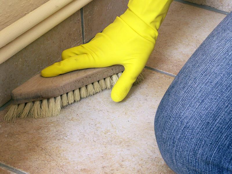Московскую домработницу подозревают в краже 236 тысяч долларов во время уборки квартиры