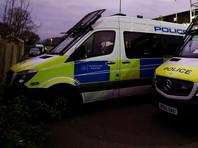 В Великобритании в столичном уголовном суде Олд-Бейли проходит судебный процесс по уголовному делу о зверском убийстве 21-летней няни-француженки Софи Лионе