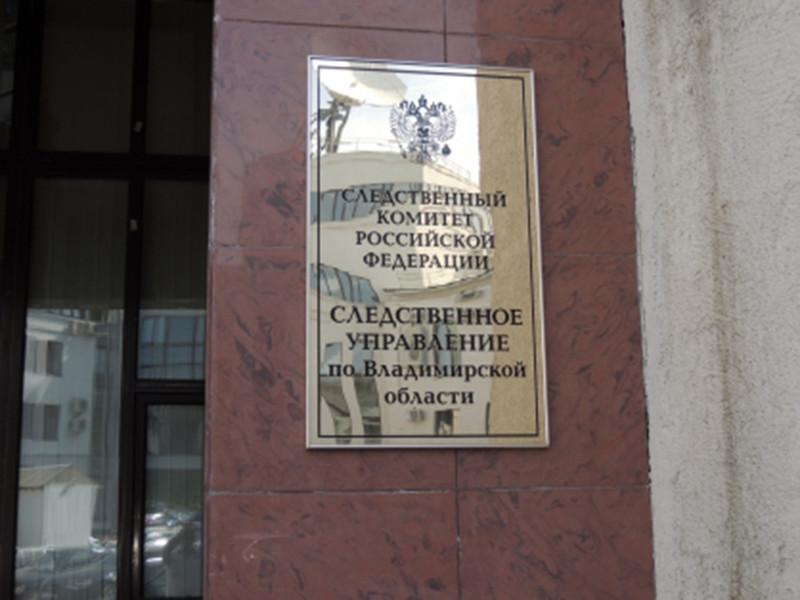 Следователи Владимирской области выясняют обстоятельства избиения школьника, снятого на видео