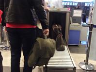 В аэропорту Внуково задержан москвич, взявший на борт самолета 243 грамма гашиша