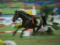 Российский всадник погиб на соревнованиях по конному спорту в Минске