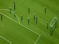 Голландские ученые выяснили, что искусственные футбольные поля могут вызывать рак