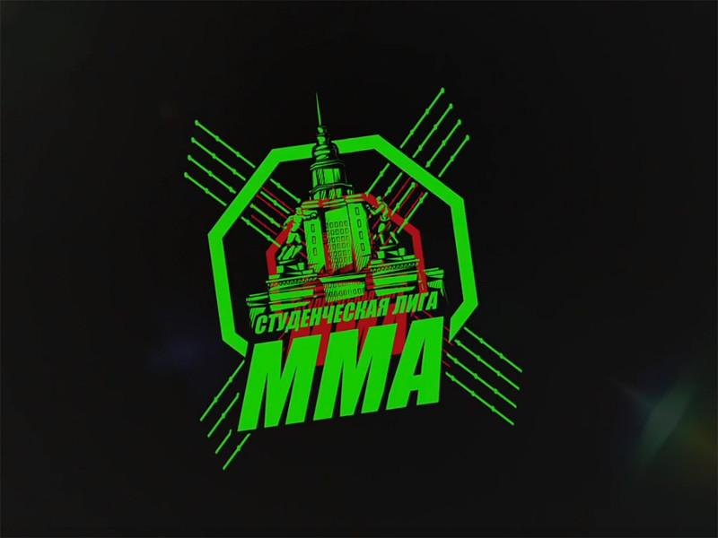 Турнир студенческой лиги MMA в Грозном, который был должен состояться в воскресенье, отменен из-за гибели в ДТП двух бойцов Мансура Денилханова и Арсена Каракетова