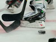 Континентальную хоккейную лигу может пополнить клуб из Узбекистана