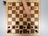 Нейросеть AlphaZero всего за четыре часа научилась безупречно играть в шахматы