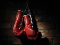 В Швеции могут запретить профессионально заниматься боксом