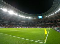 Футбольные поля ЧМ-2018 неуязвимы для саранчи, заверили в оргкомитете