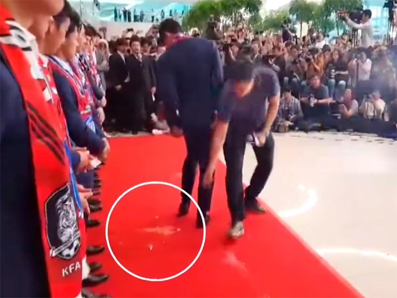 Корейских футболистов забросали яйцами по приезде на родину